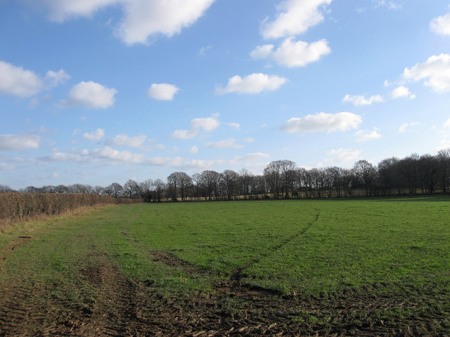 Kiln Field