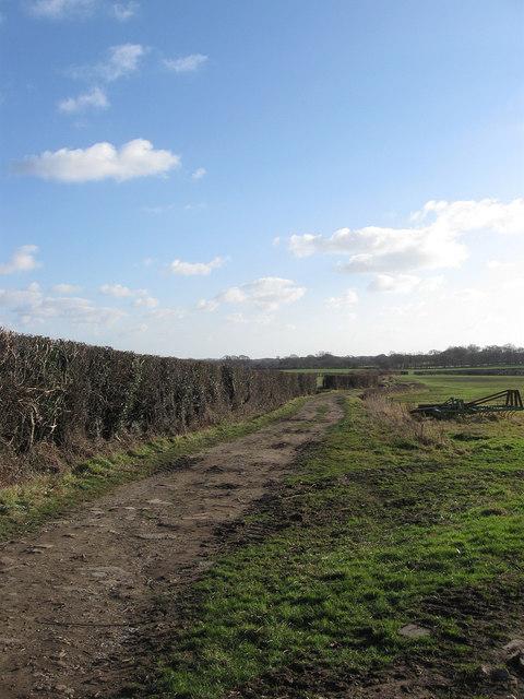 Bridleway to Lower Horsebridge