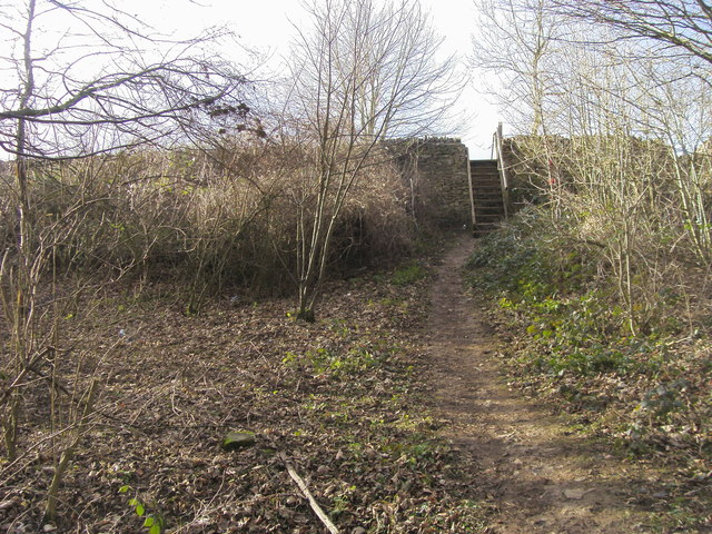 Leaving over the wall of Blenheim Park