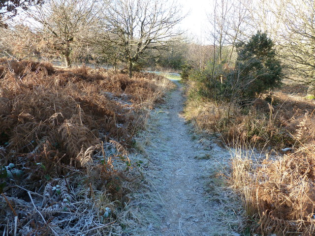 Frosty path on Red House Common