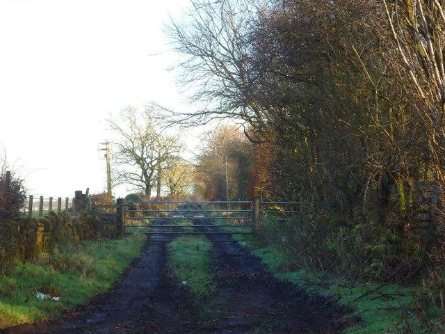 Westerglen, track to Glen