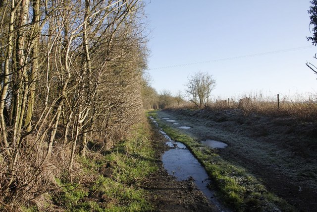 The old trackbed