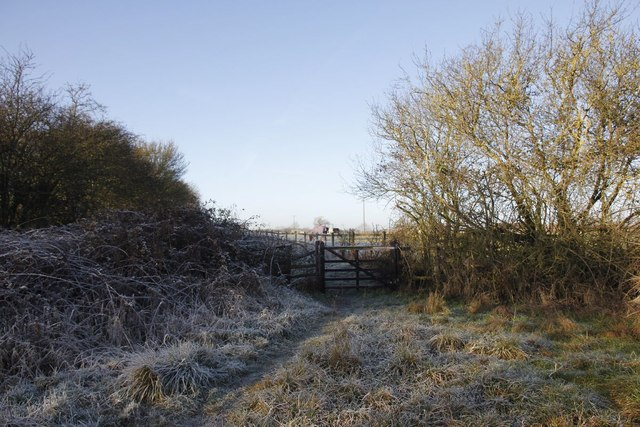 Gate in the hedge