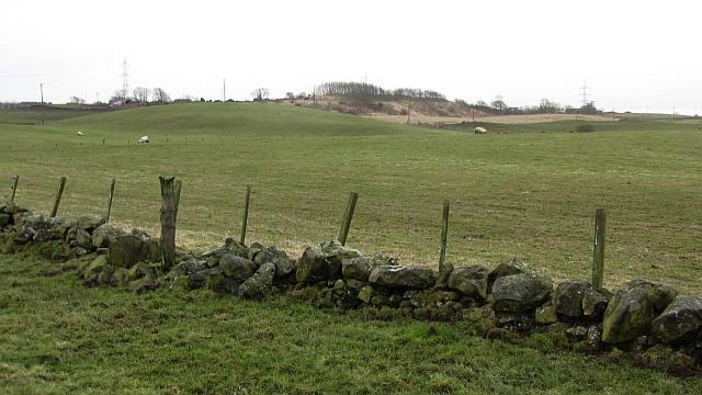 Field and dyke
