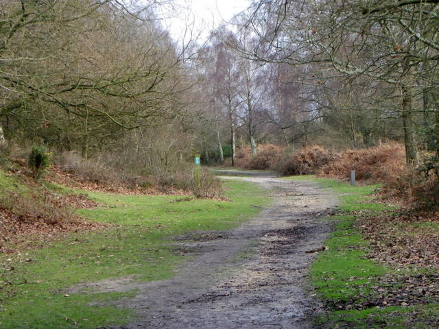 Former railway line near Burley