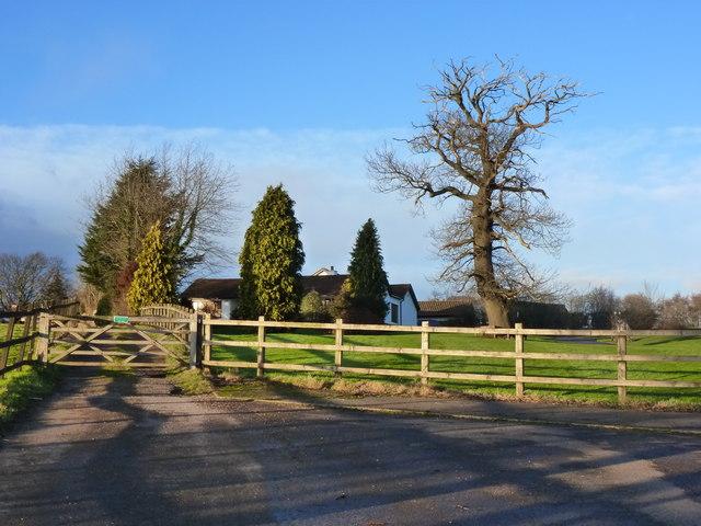 Lane at Mount Tudor, Catsash, near Newport