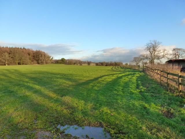 Looking towards the golf course, Mount Tudor, Catsash, near Newport