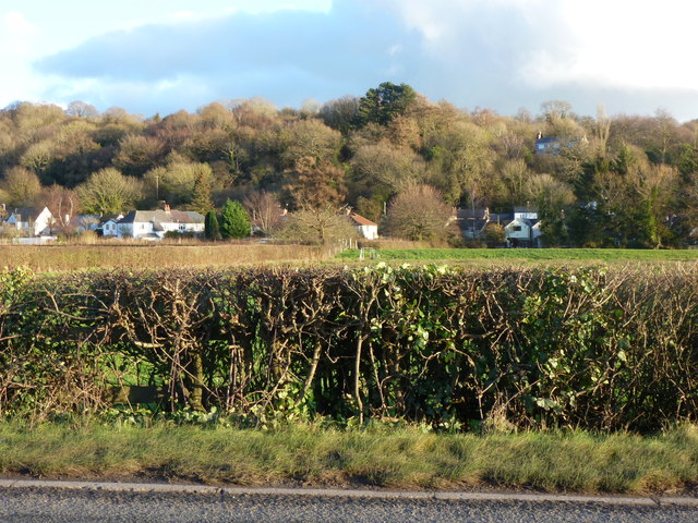 Hedge and houses and a field from a traffic jam, near Christchurch, Newport