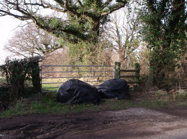 Public footpath and black bags south of Blackstone