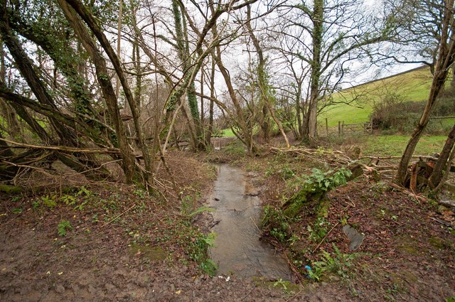 The view downstream from a bridge on Coney Gut near Coombe farm