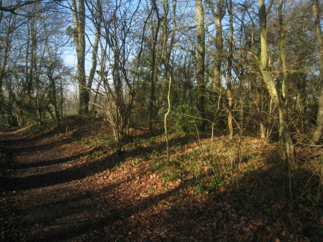 Three Castles Path - Broad Oak