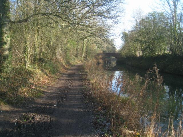 Tow path at Broad Oak