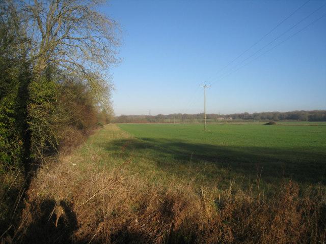 Field boundary - Poland Farm