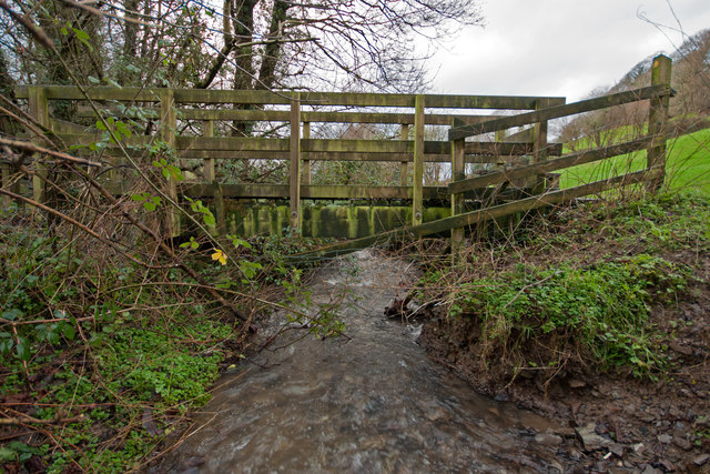 A footbridge on Coney Gut at Coombe Farm as seen from upstream