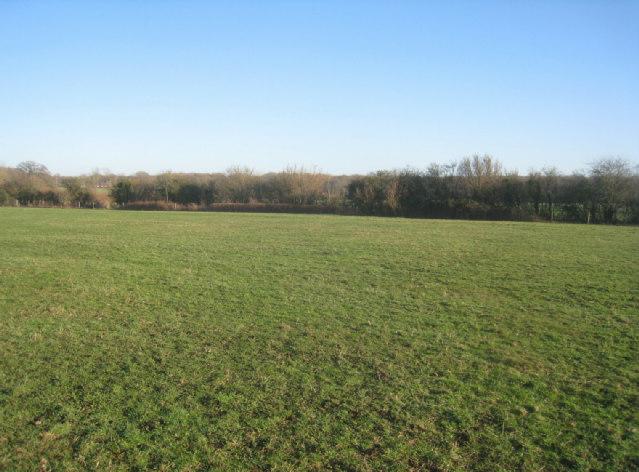 Grazing field - Poland Mill