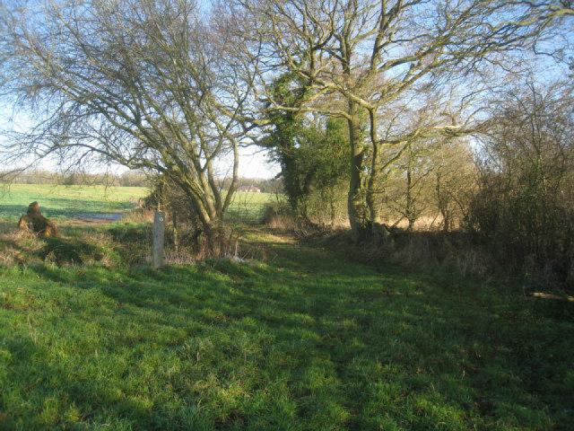 On the path to Potbridge
