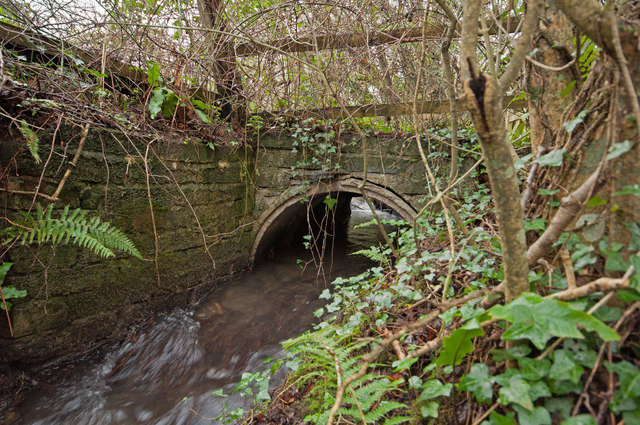 A culvert where Coney Gut passes under access to a field