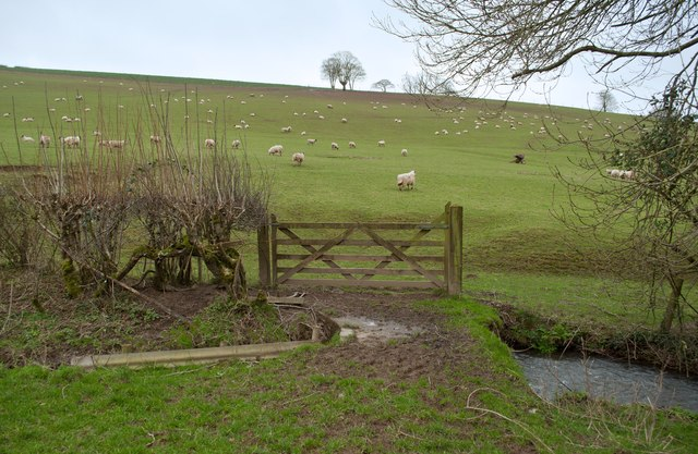 A footpath near Dean Farm passing over Coney Gut