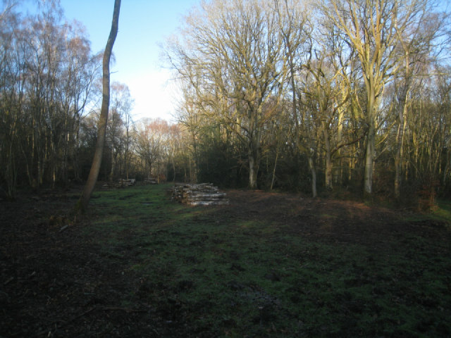 Managing Odiham Common