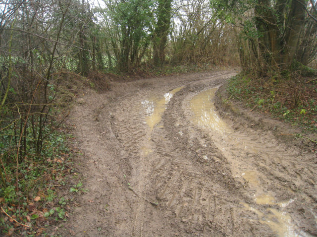 Farm track by Small's Copse