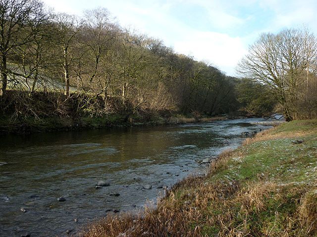 The River Lune, Crook of Lune Wood