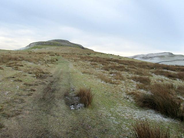 Footpath on In Moor
