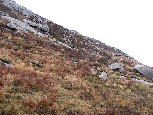 Slopes of Meall nan Damh