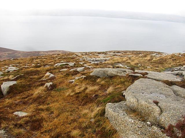 Upper slopes of Meall nan Damh