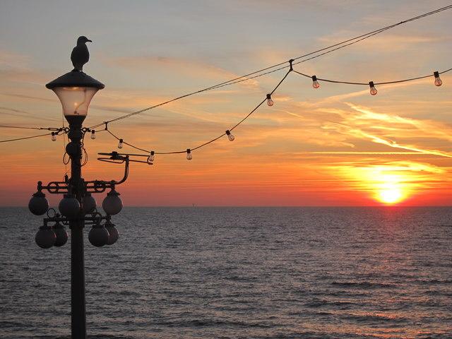 Lamp and gull at sunrise
