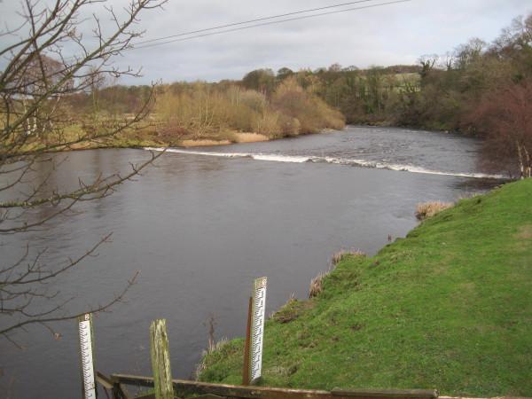 River South Tyne east of Haydon Bridge