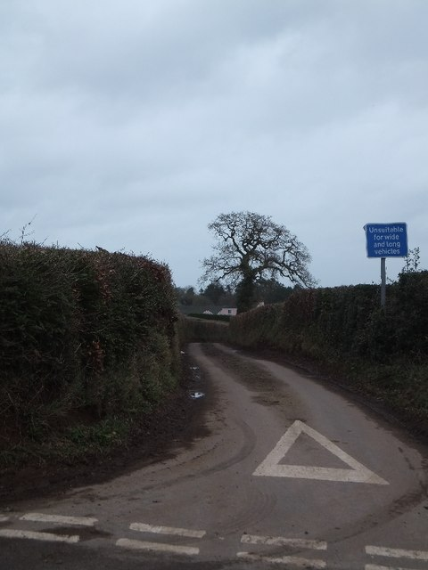 Road to East Butterleigh