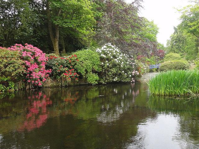 Johnston Gardens - Aberdeen