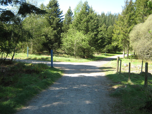 A choice of path or track
