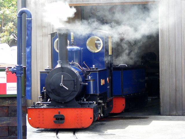 Exbury Steam
