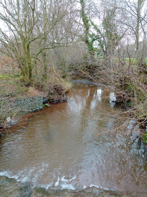 The Cwm Brook