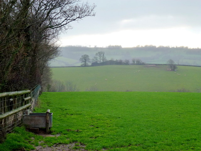 Pasture edge and water tank