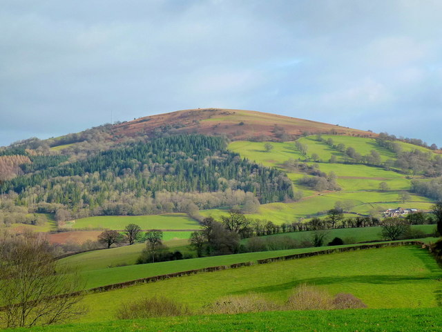 Garway Hill viewed from Graig Syfyrddin
