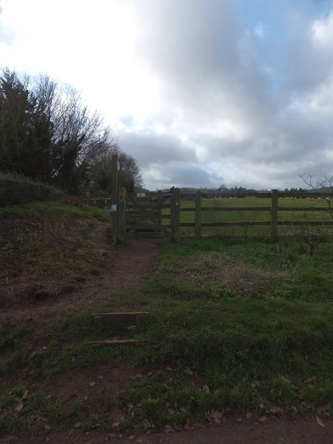 Footpath to Knowle