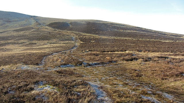 Paths on Harbour Hill