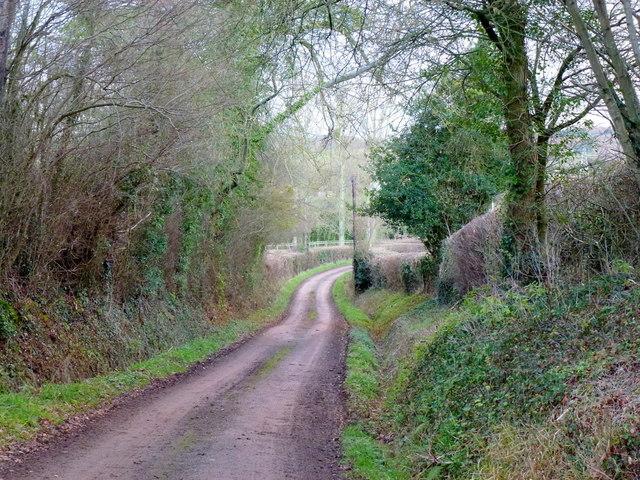 Lane to Kilpeck