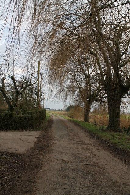 Little Side Road near Holme Lodge Farm