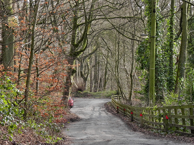 Wood Road Lane, Summerseat