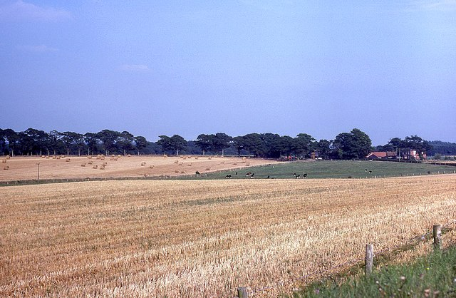 View of farmland from Ashley Down Lane
