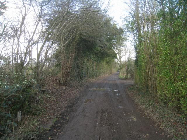 Muddy driveway / track