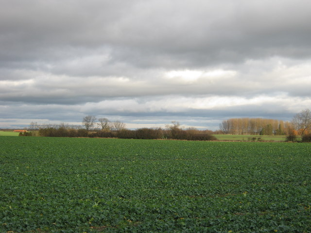 Farmland north of Jolby Lane