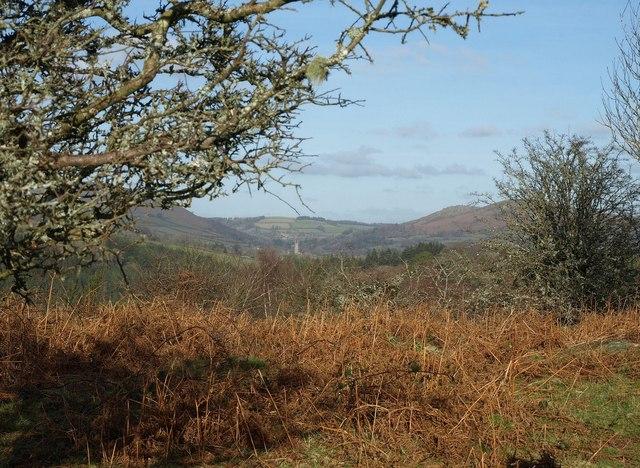 Access land beside Blackadon Tor
