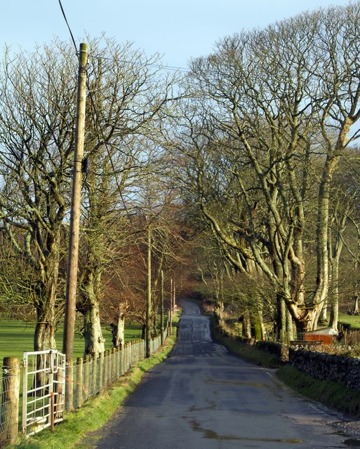 The Carradale Road at Saddell