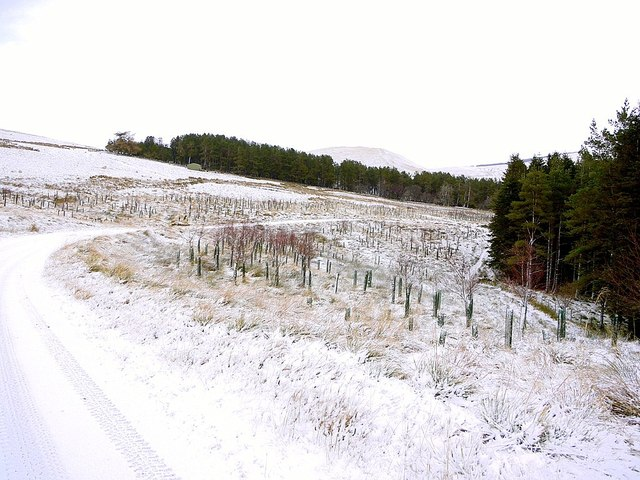 Track to Uswayford near Murder Cleugh