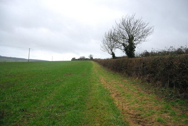 Footpath to Big Wood