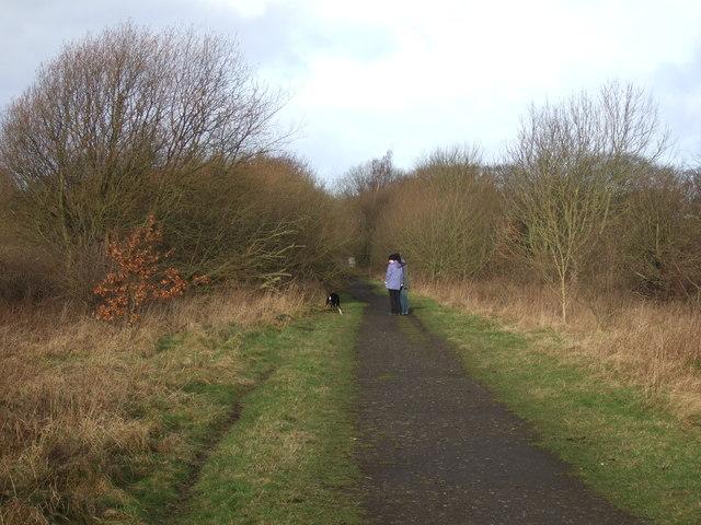 Cycle track on dismantled railway